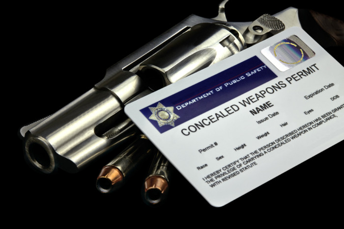 Pistol Permit Course, Checkout, Cart, New York State Pistol Permit Course